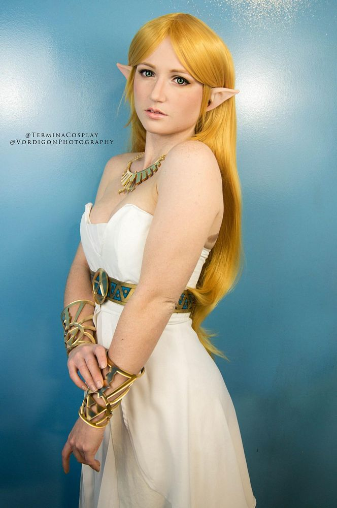Breath of the Wild Princess Zelda